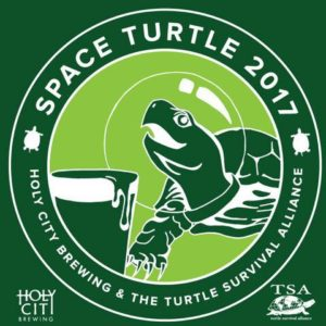 Space Turtle 1