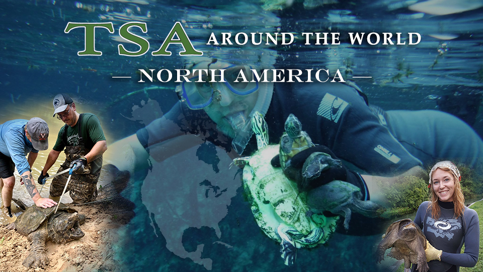 TSA Around the World _North America for WEB