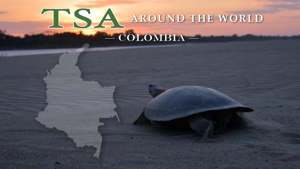 TSA Around the World_Colombia for Web