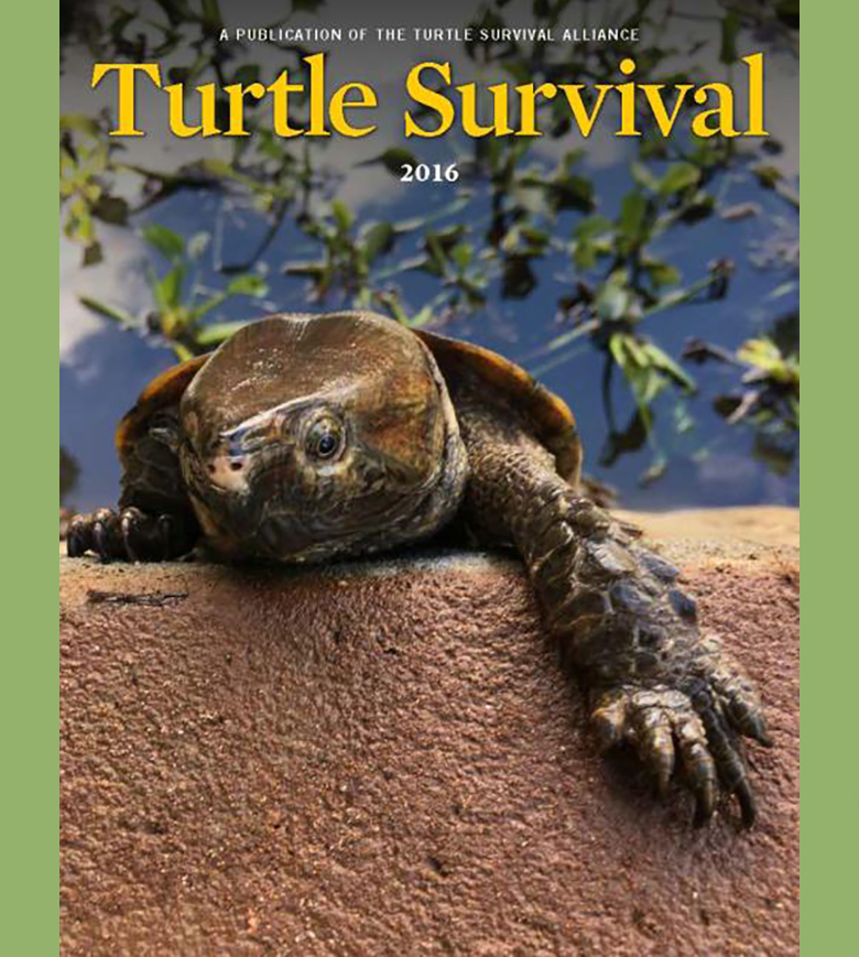 Turtle Conservation Magazine