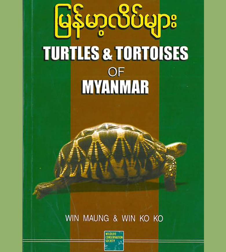 Turtles of Myanmar